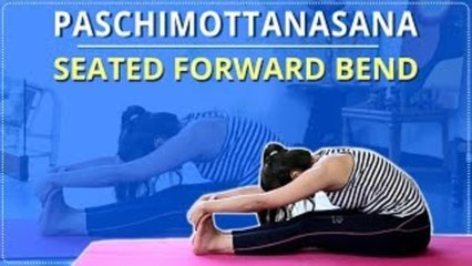 Learn The Seated forward bend | Paschimottanasana |Simple Yoga For Beginners |Mind Body Soul