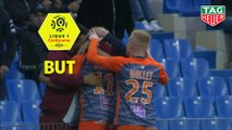 But Andy DELORT (22ème) / Montpellier Hérault SC - EA Guingamp - (2-0) - (MHSC-EAG) / 2018-19