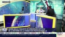 ADomLingua s'inquiète du démarrage difficile de la réforme de la formation professionelle - 04/04