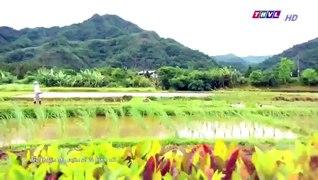 Dai Thoi Dai Tap 6 dai thoi dai tap 7 Phim Dai Loan THVL1 Lo