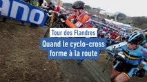 Quand le cyclo-cross forme à la route - Cyclisme - Tour des Flandres