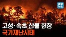 [엠빅뉴스] 고성·속초 산불 현장 촬영 영상과 제보 영상입니다