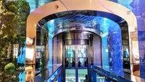 Un gigantesque aquarium se fissure au milieu d'un centre commercial