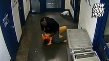 Laundry bag whack sparks excessive prison guard beatdown