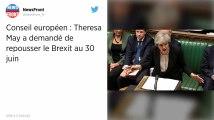 Brexit. Theresa May demande à l'Union européenne un report de la date au 30 juin 2019