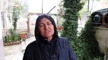 Burdur'da telef olmuş çok sayıda kedi ve köpek bulundu