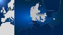 14 Personen festgenommen nach tödlicher Schießerei nahe Kopenhagen