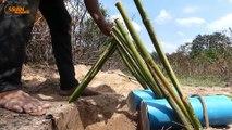 Primitive Technology: Man Make Build Deep Hole Underground Python Trap Using PVC Pipe & Deep Hole