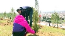 Bakü Türk Okulları öğrencileri Digah Türk Şehitliği'nde fidan dikti