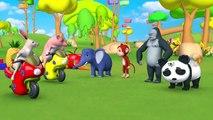 Les Animaux de Zoo de Course de Moto sur le Curseur de la Piste - Apprendre les Noms de Fruits pour les Enfants avec Grange Et Animaux de la Forêt | Peony Noakes
