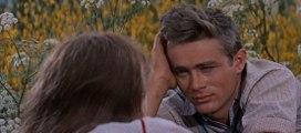 East of Eden Movie (1955) - Julie Harris, James Dean, Raymond Massey