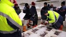 Brexit : les pêcheurs écossais se sentent oubliés