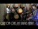 ONE ON ONE: Shawn Mullins - My Stupid Heart July 13th, 2016 City Winery New York