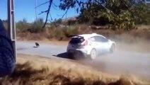 Ce pilote de rally évite de justesse un chien au milieu de la route