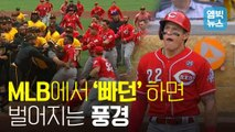 [엠빅뉴스] '킹캉' 과 '야생마' 한판 붙을 뻔 한 MLB 피츠버그와 신시내티의 전투(?)