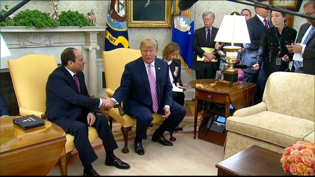 Trump praises Sisi as critics reiterate concern for human rights
