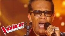 James Brown - I Got You   Vigon   The Voice France 2012   Blind Audition