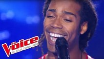 Adele - Someone Like You | Jua Amir | The Voice France 2012 | Blind Audition