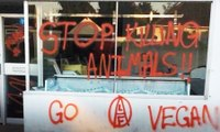 Graffiti and 'barbecued dogs': have vegan protests gone too far?