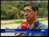 Telemundo 09/04/2019
