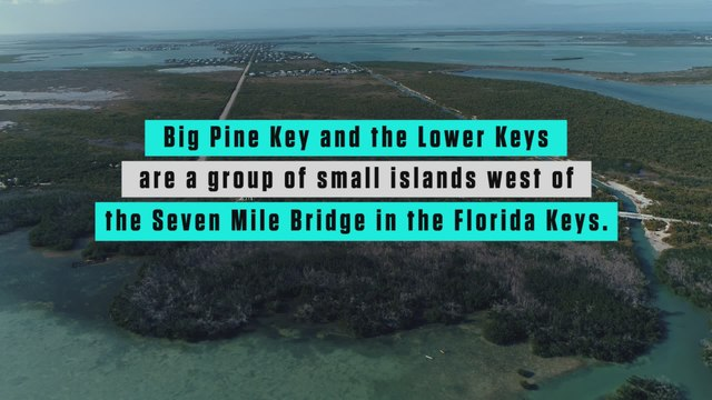 How to have the best paddle weekend ever in Big Pine Key, Florida