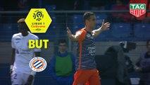 But Ellyes SKHIRI (55ème) / Montpellier Hérault SC - Toulouse FC - (2-1) - (MHSC-TFC) / 2018-19