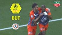 But Souleymane CAMARA (77ème) / Montpellier Hérault SC - Toulouse FC - (2-1) - (MHSC-TFC) / 2018-19