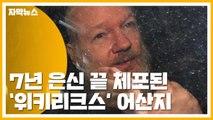 [자막뉴스] '위키리크스' 어산지 7년 은신 끝 체포...美, 송환 요청 / YTN
