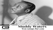 Muddy Waters - Forty days & forty night