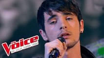 Coldplay - Trouble | Louis Delort  | The Voice France 2012 | Prime 1