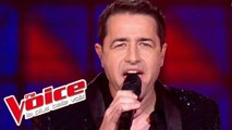 Bee Gees - Staying Alive | Philippe Tailleferd | The Voice France 2012 | Prime 1