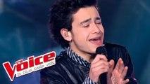 Vanessa Paradis - Divine Idylle   Sacha Tran   The Voice France 2012   Prime 1