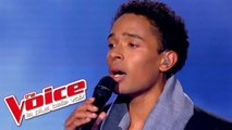 Judy Garland - Over the Rainbow | Stephan Rizon | The Voice France 2012 | Prime 2