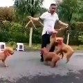 Regardez ce que font ces chiens avec leur maître. Le saut à la corde n'a jamais été aussi amusant !