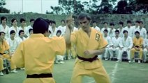 Enter The Dragon Movie (1973) Bruce Lee