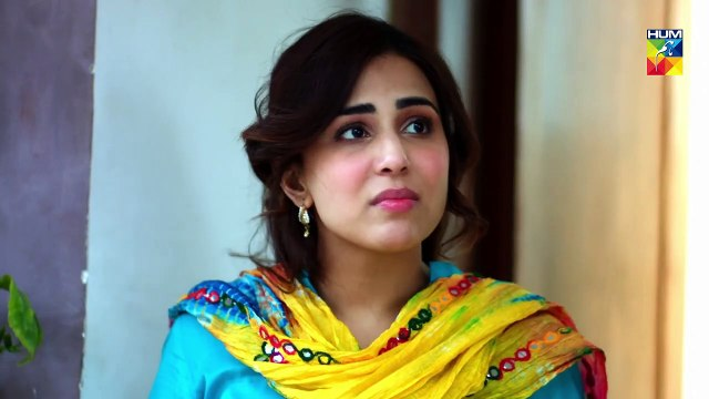 Mujhay Tum Pasand Ho  Epi 02  Choti Choti Batain  HUM TV  14 April 2019