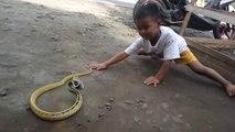 Cet enfant joue avec un serpent très agressif... même pas peur