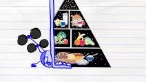 Crayon Fouets Crayon Amusant en Forme! - MUETS ET DUMBERBELL - Animation Dessins animés pour les Enfants