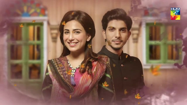 Mujhay Tum Pasand Ho  - Episode 2  - Choti Choti Batain - HUM TV  14 April 2019