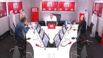 """""""Un tiers des oiseaux européennes a disparu"""", s'inquiète Nicolas Vanier sur RTL"""