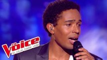 The Beatles - With a Little Help From My Friends | Stéphan Rizon | The Voice 2012 | Demi-Finale