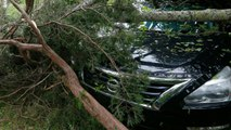 Storms Damage Dealerships From Texas To Ohio