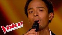 Lucio Dalla - Caruso | Stéphan Rizon | The Voice France 2012 | Finale