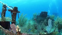 Wreck Diving in Nassau with Stuart Cove's Dive Bahamas