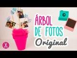 ¡Decora tu cuarto con Fotos! Cómo hacer un  Álbum de fotos Creativo | Árbol de Fotos | DIY Catwalk ♥