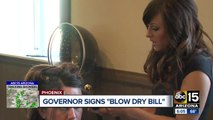 Arizona governor axes licenses for blow-dry salons