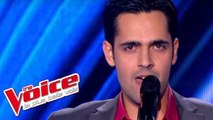 Whitney Houston – The Greatest Love of All | Yoann Fréget | The Voice France 2013 | Blind Audition