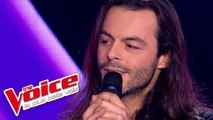 Michel Polnareff – Goodbye Marylou | Nuno Resende | The Voice France 2013 | Blind Audition