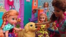 Les chiots ! Elsa & Anna les tout-petits chiens dans le Pet VET - Malade ? Animal médecin de la clinique