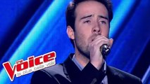 Daniel Balavoine – SOS d'un terrien en détresse | Quentin | The Voice France 2013 | Blind Audition